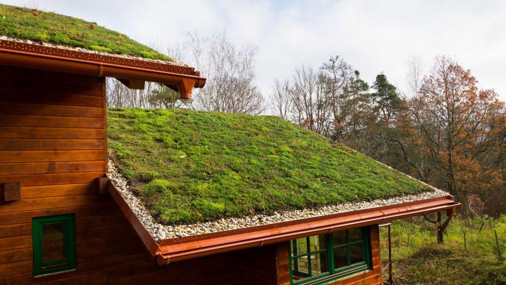 telhado verde - Sustentabilidade: 3 medidas sustentáveis para aplicar em seu processo construtivo